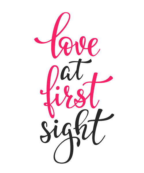 Love at First Sight Fundraising and Volunteer Appeal - Accrington & District Blind Society.